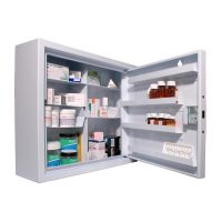 CDC560 Wall Mounted, Ambient Steel Controlled Drugs Cabinet 560L